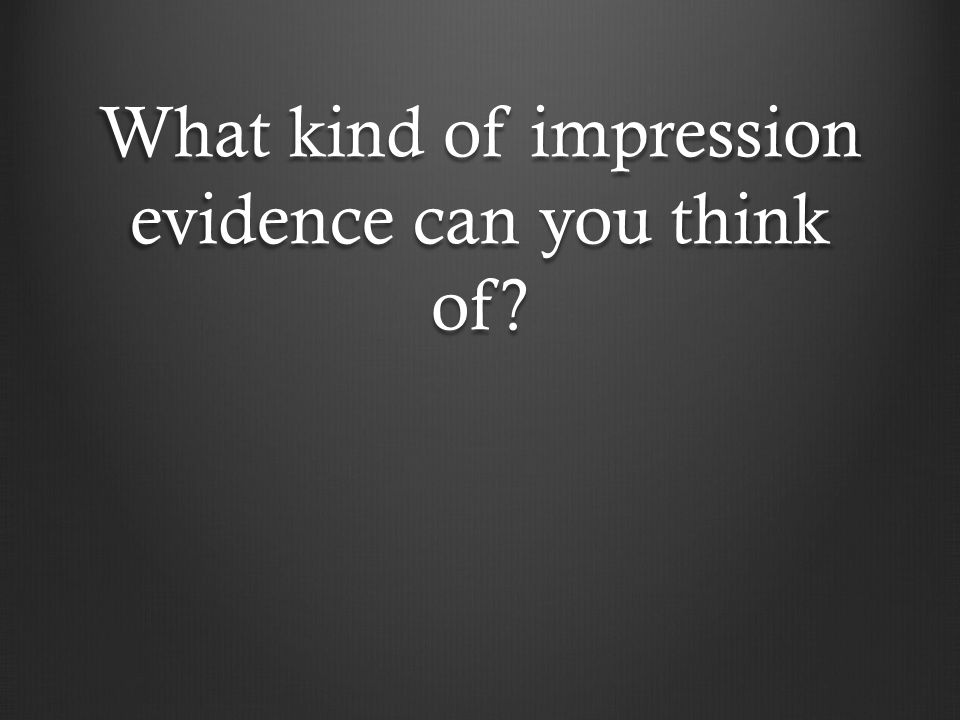 What kind of impression evidence can you think of
