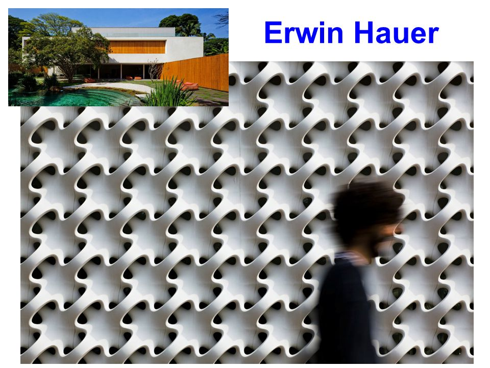 Erwin Hauer