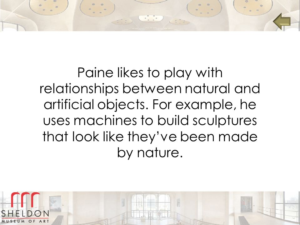 Paine likes to play with relationships between natural and artificial objects.