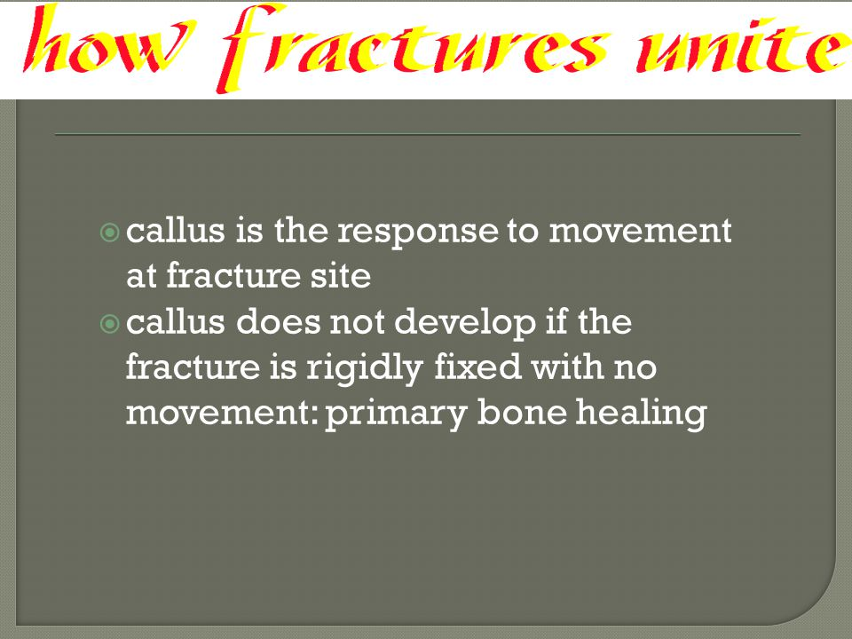 callus is the response to movement at fracture site
