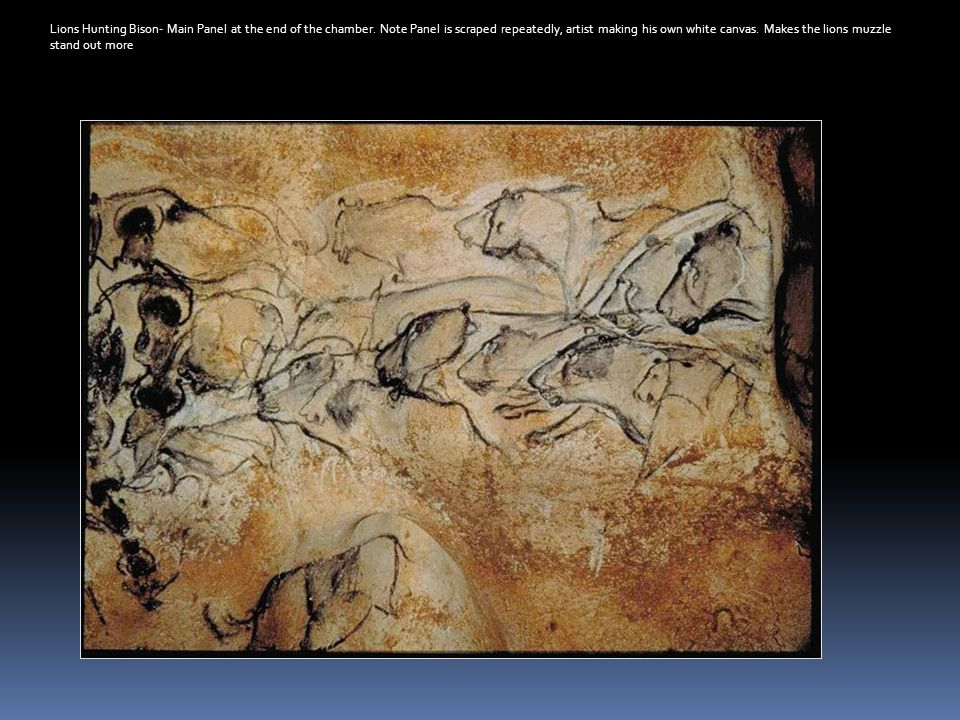 Lions Hunting Bison- Main Panel at the end of the chamber