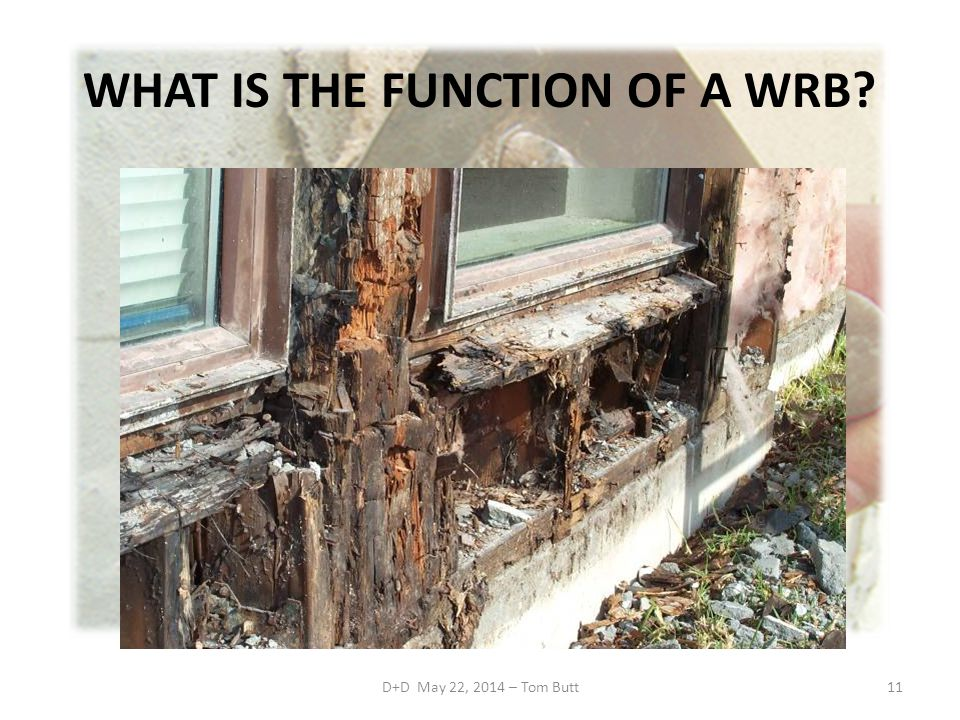 WHAT IS THE FUNCTION OF A WRB
