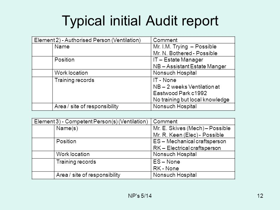 Typical initial Audit report