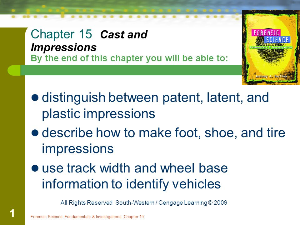 distinguish between patent, latent, and plastic impressions