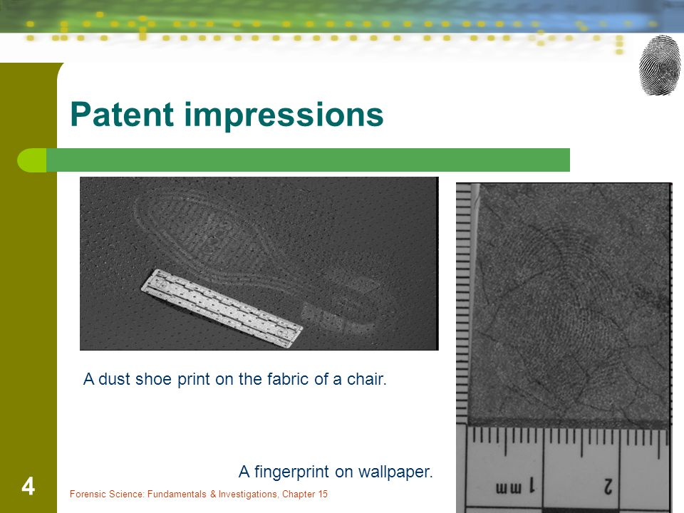 Patent impressions A dust shoe print on the fabric of a chair.