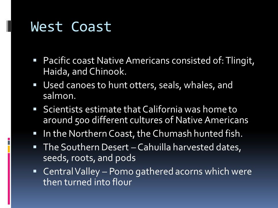 West Coast Pacific coast Native Americans consisted of: Tlingit, Haida, and Chinook. Used canoes to hunt otters, seals, whales, and salmon.