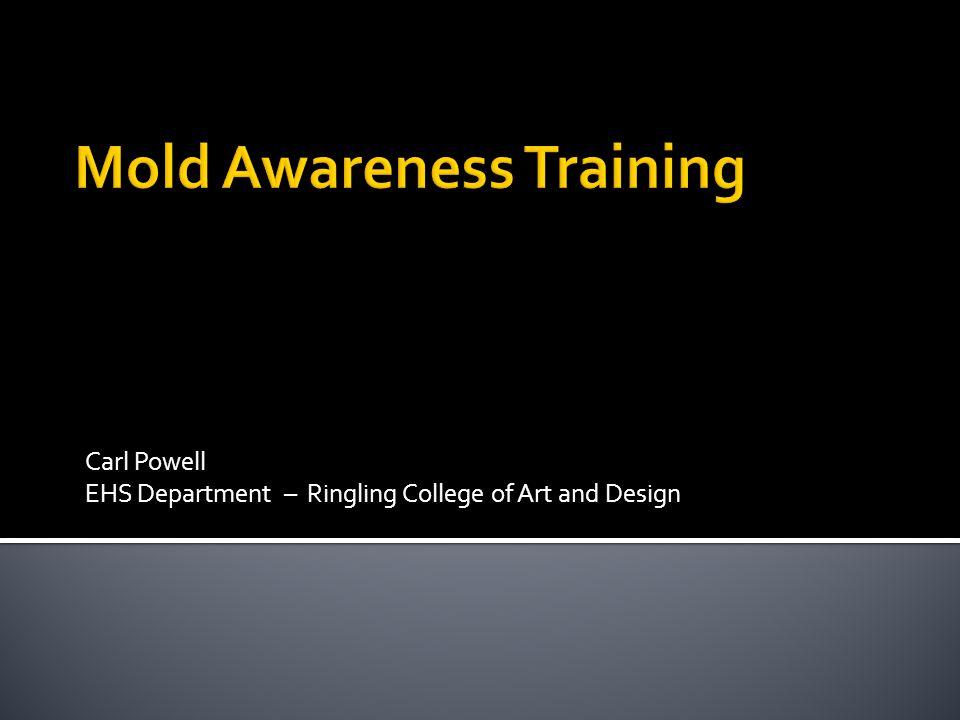 Mold Awareness Training