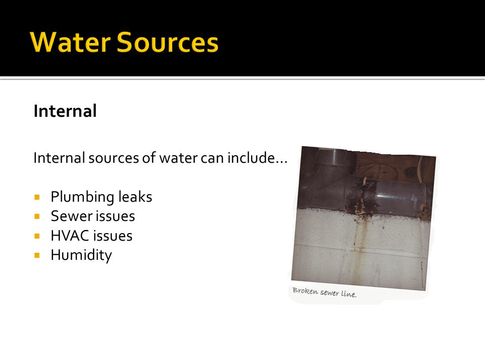 Water Sources Internal Internal sources of water can include…