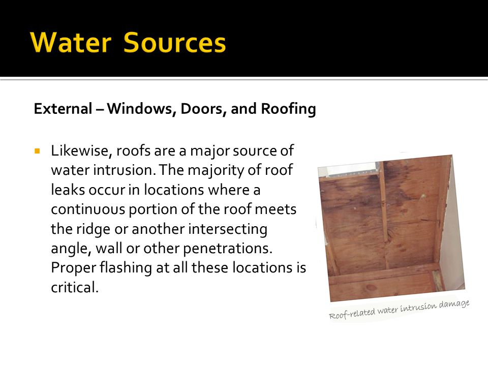 Water Sources External – Windows, Doors, and Roofing