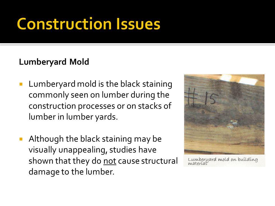 Construction Issues Lumberyard Mold