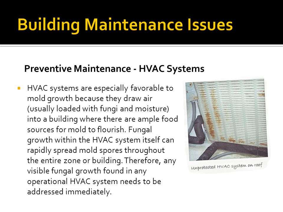 Building Maintenance Issues