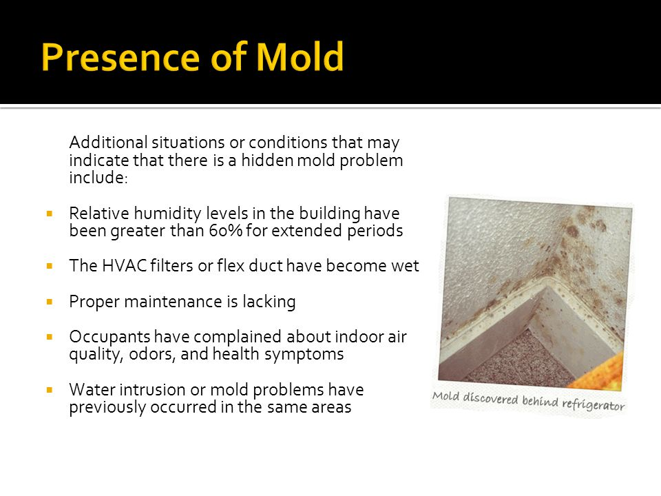 Presence of Mold Additional situations or conditions that may indicate that there is a hidden mold problem include: