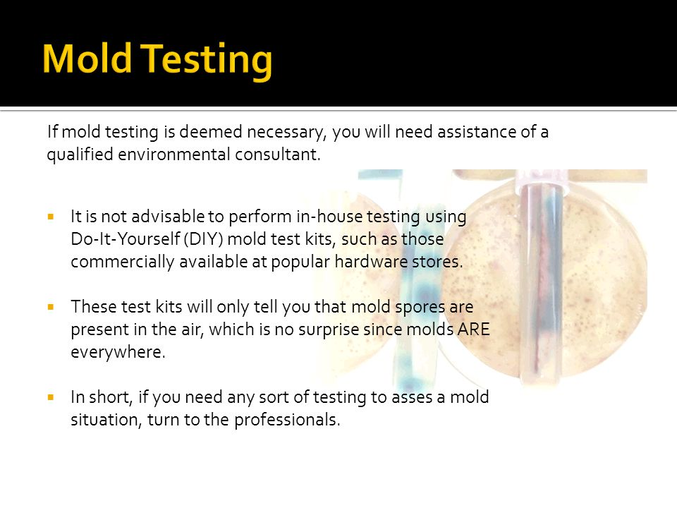 Mold Testing If mold testing is deemed necessary, you will need assistance of a qualified environmental consultant.