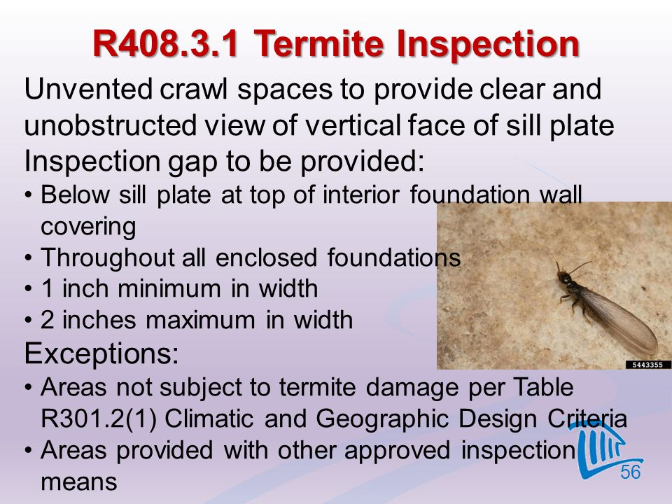 4/12/2017 R408.3.1 Termite Inspection. Unvented crawl spaces to provide clear and unobstructed view of vertical face of sill plate.