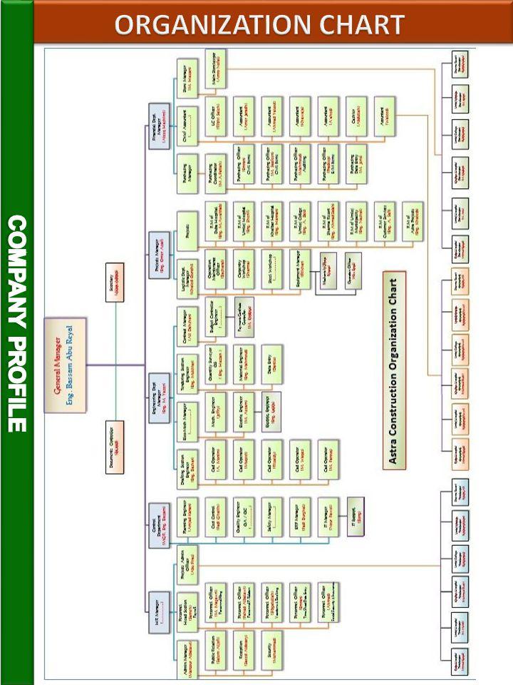 ORGANIZATION CHART COMPANY PROFILE