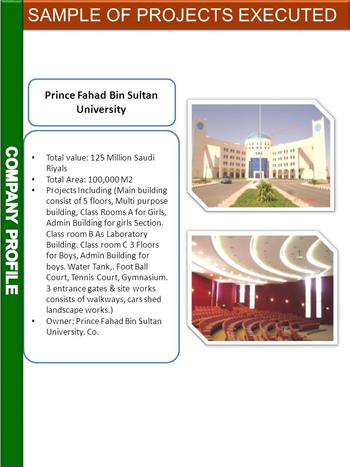 Prince Fahad Bin Sultan University