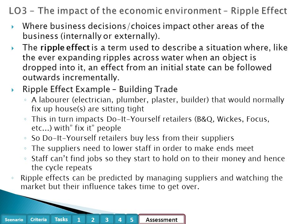 LO3 - The impact of the economic environment – Ripple Effect