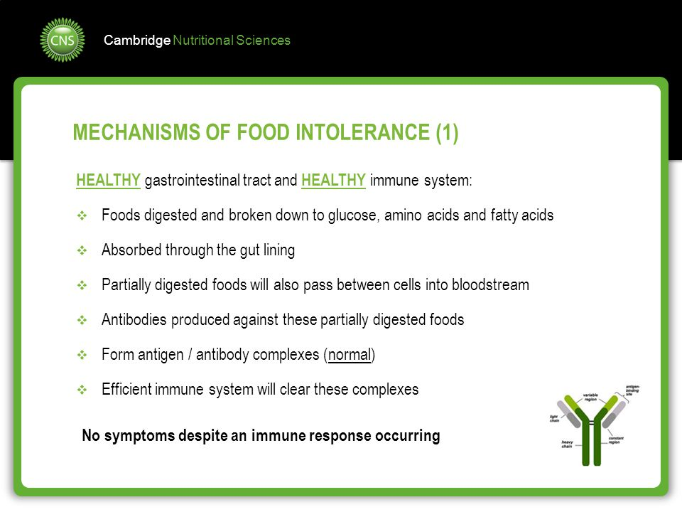 MECHANISMS OF FOOD INTOLERANCE (1)