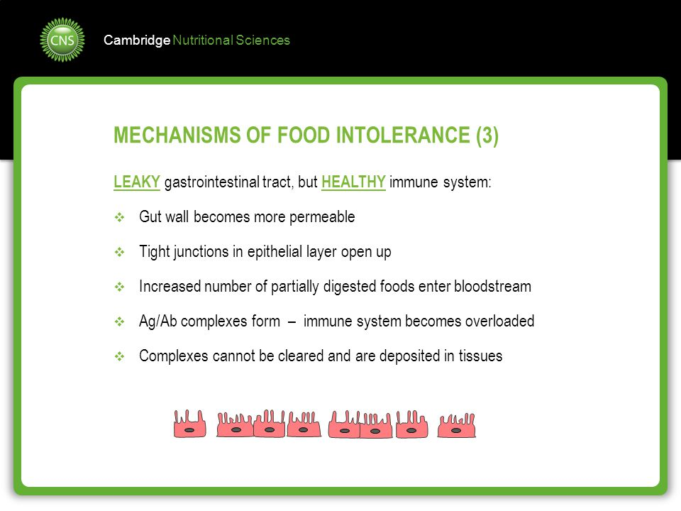 MECHANISMS OF FOOD INTOLERANCE (3)