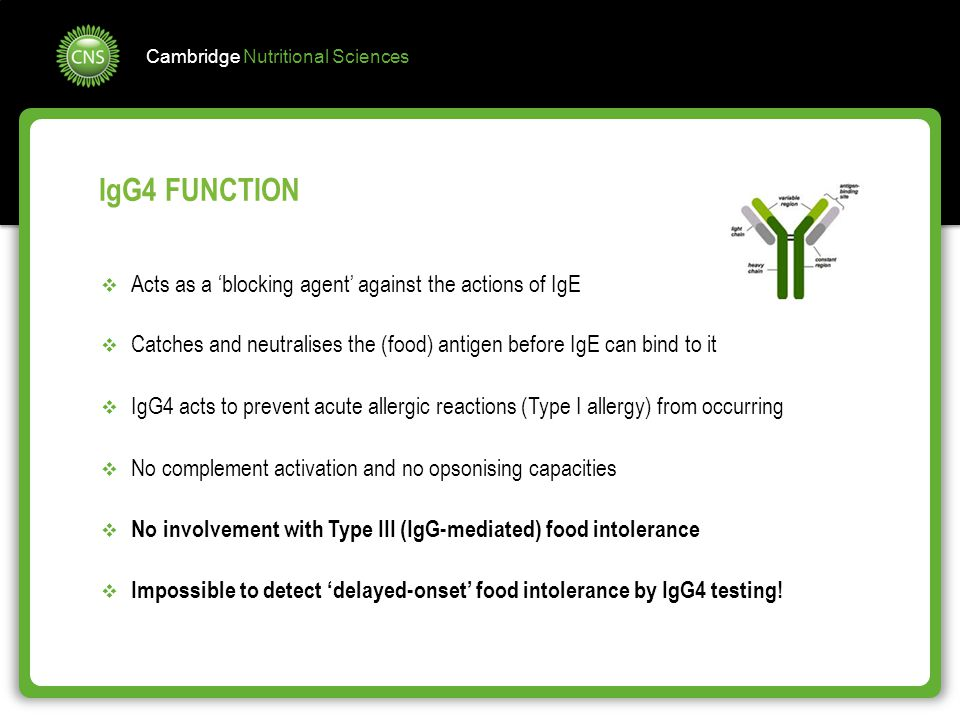 IgG4 FUNCTION Acts as a 'blocking agent' against the actions of IgE