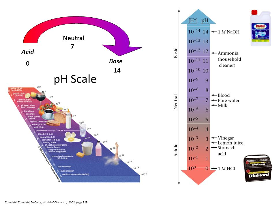 pH Scale Neutral 7 Acid Base 14