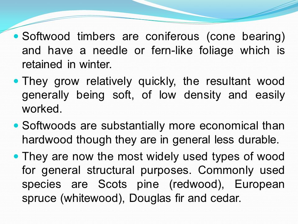 Softwood timbers are coniferous (cone bearing) and have a needle or fern-like foliage which is retained in winter.