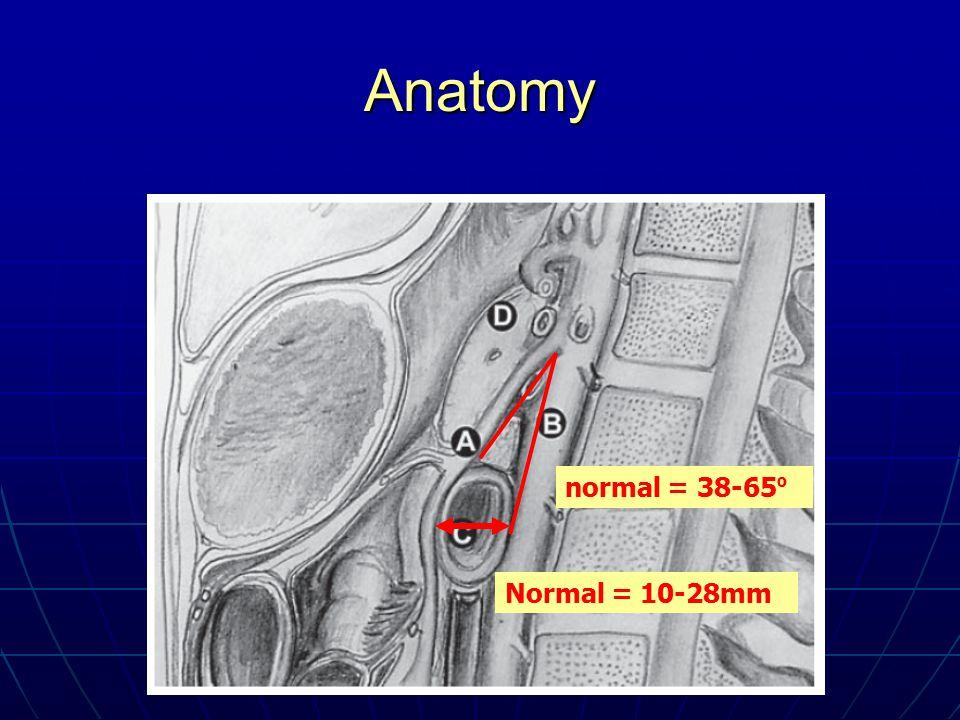 Anatomy normal = 38-65º Normal = 10-28mm