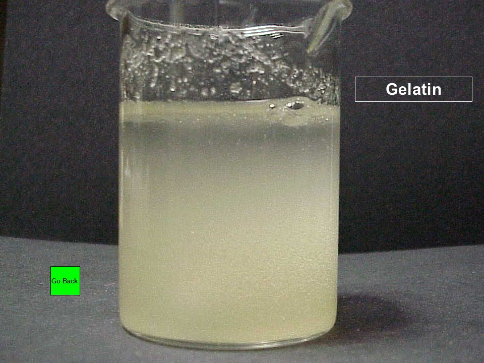 Gelatin Go Back