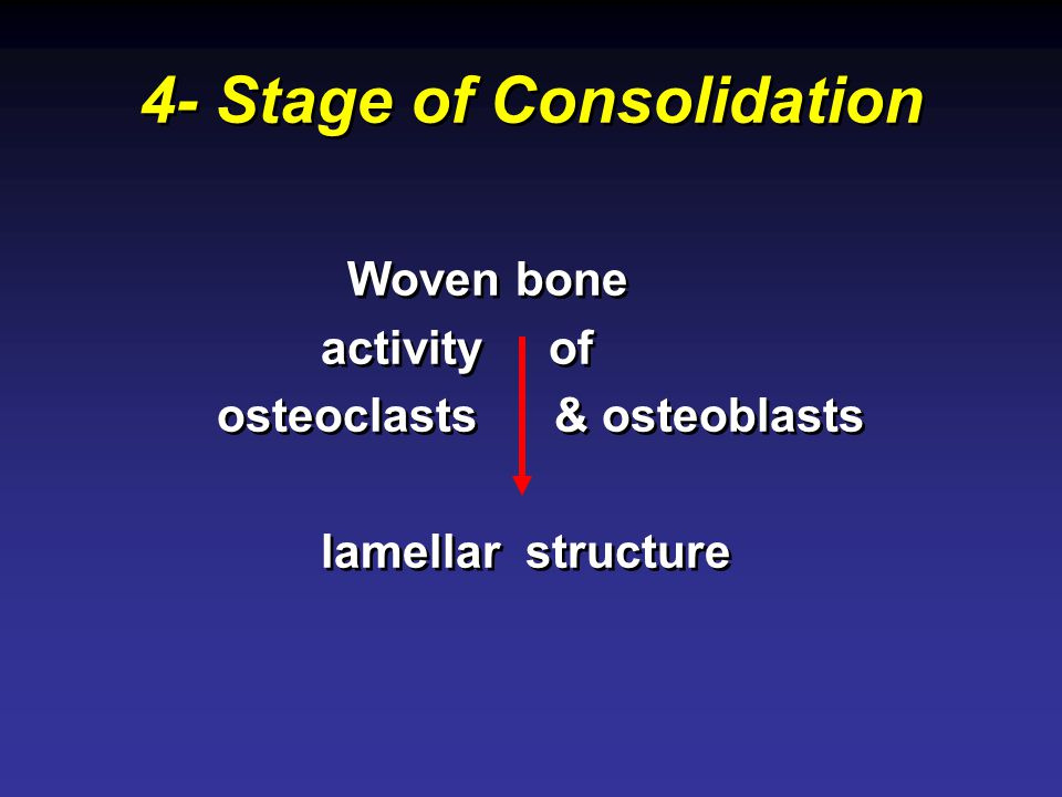 4- Stage of Consolidation