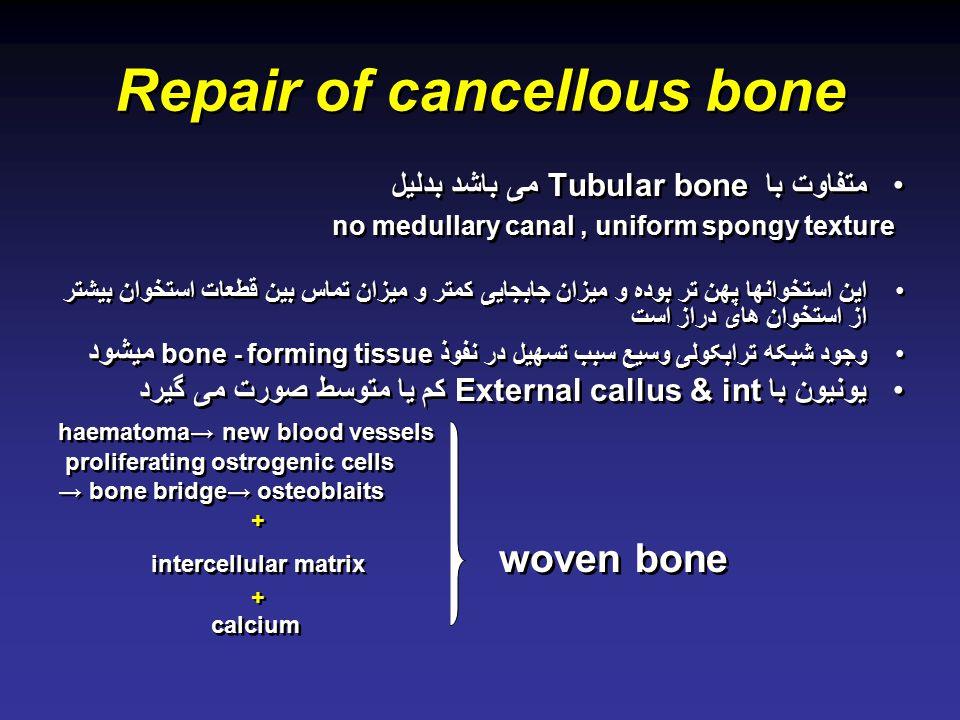 Repair of cancellous bone