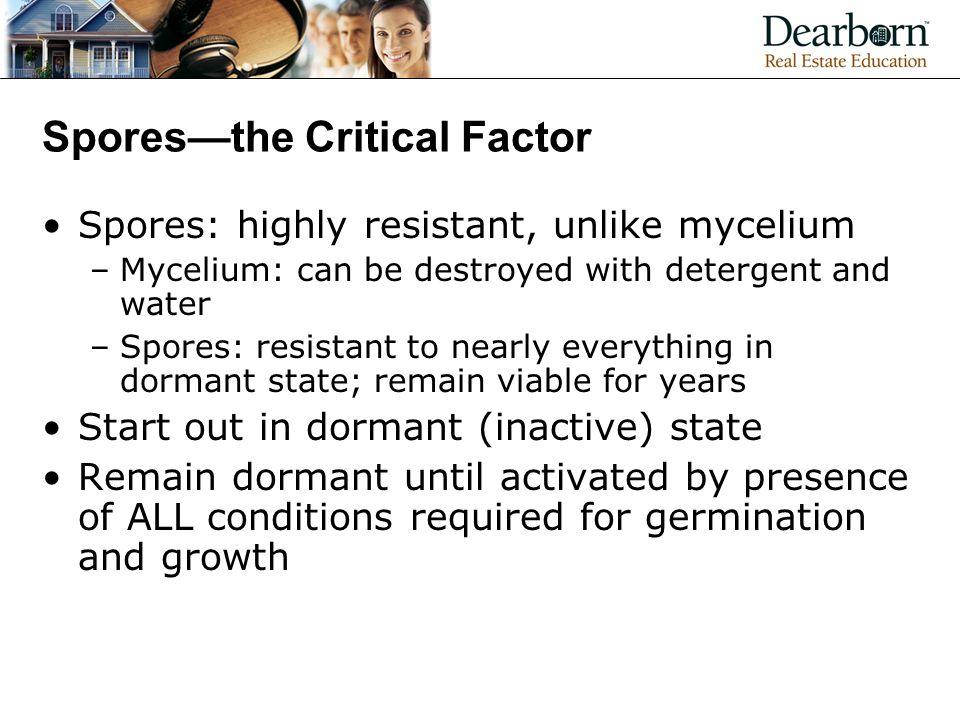 Spores—the Critical Factor