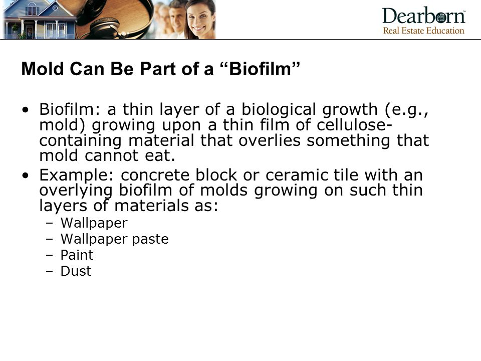 Mold Can Be Part of a Biofilm