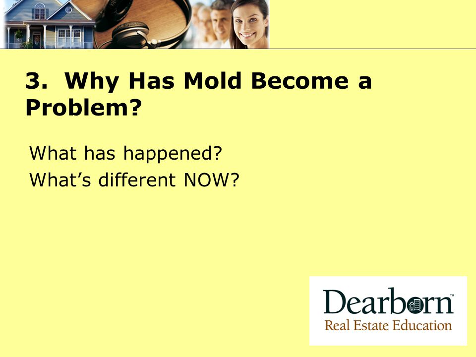3. Why Has Mold Become a Problem