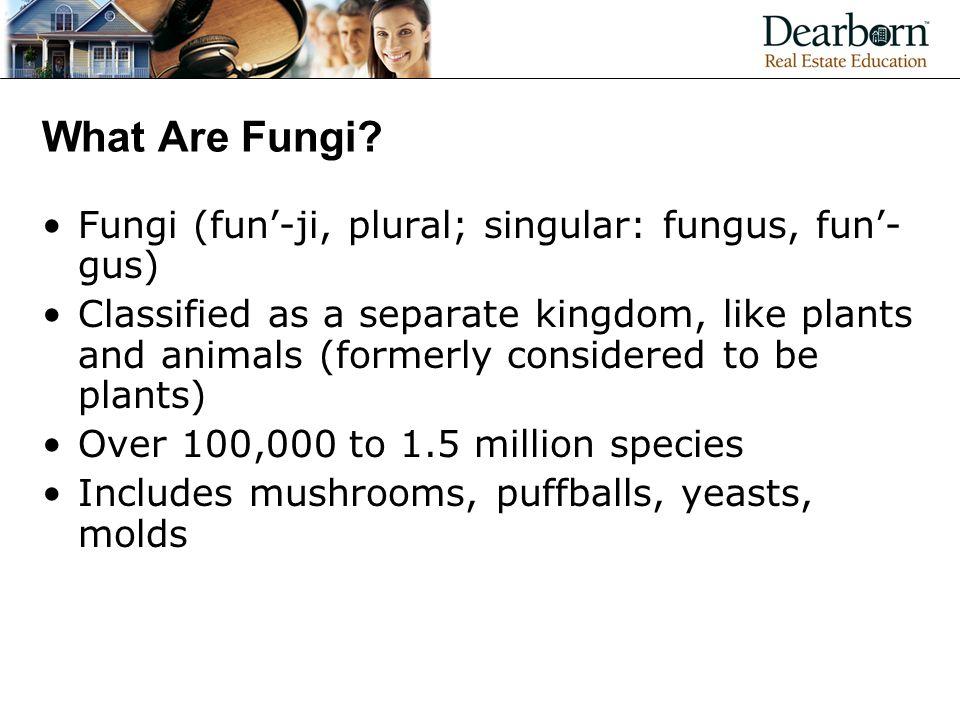 What Are Fungi Fungi (fun'-ji, plural; singular: fungus, fun'-gus)