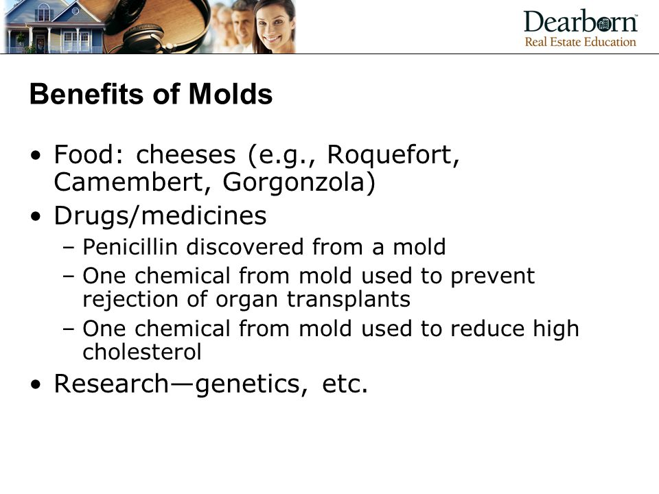 Benefits of Molds Food: cheeses (e.g., Roquefort, Camembert, Gorgonzola) Drugs/medicines. Penicillin discovered from a mold.