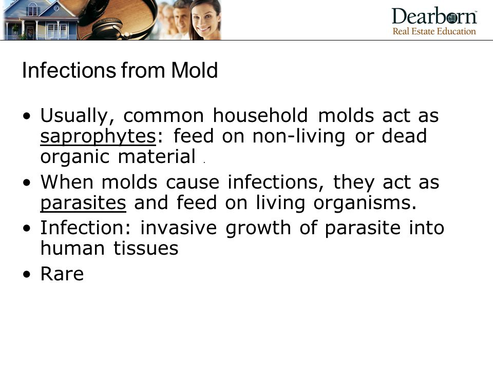 Infections from Mold Usually, common household molds act as saprophytes: feed on non-living or dead organic material .