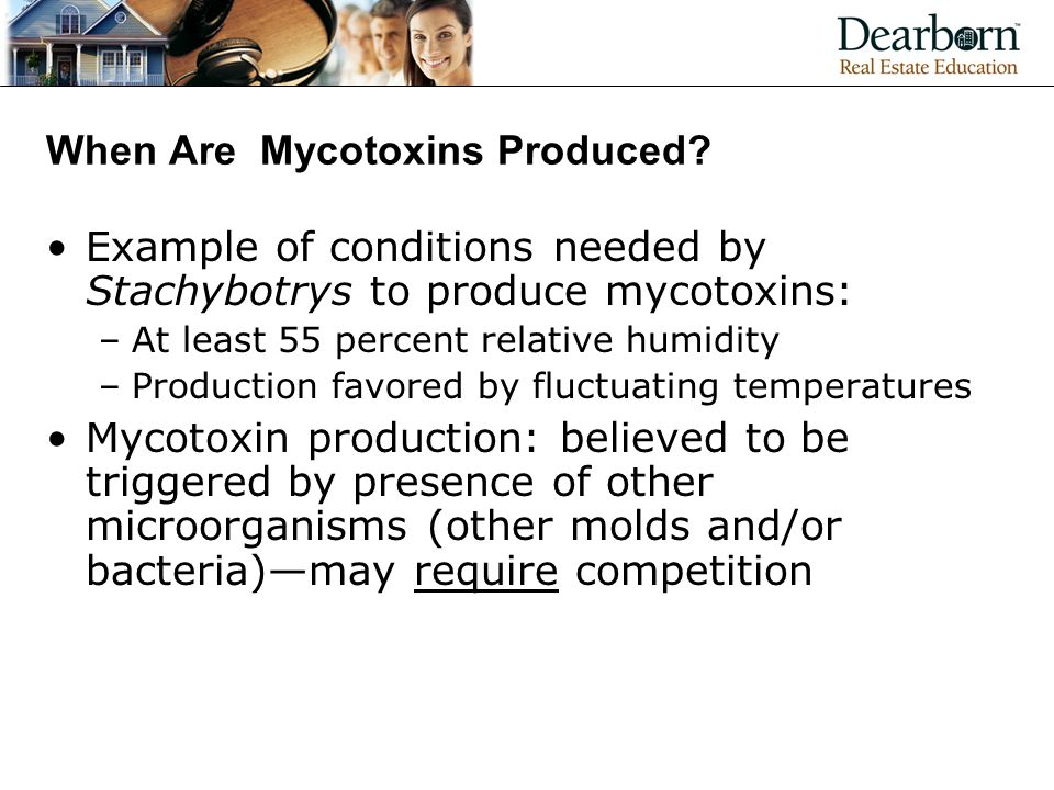 When Are Mycotoxins Produced