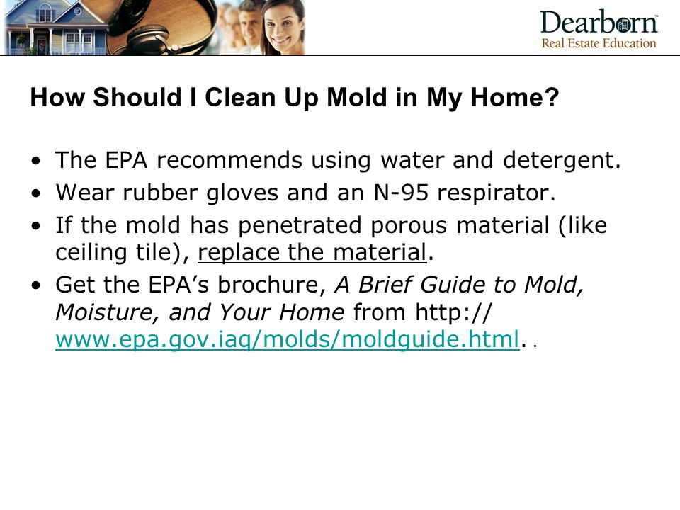 How Should I Clean Up Mold in My Home