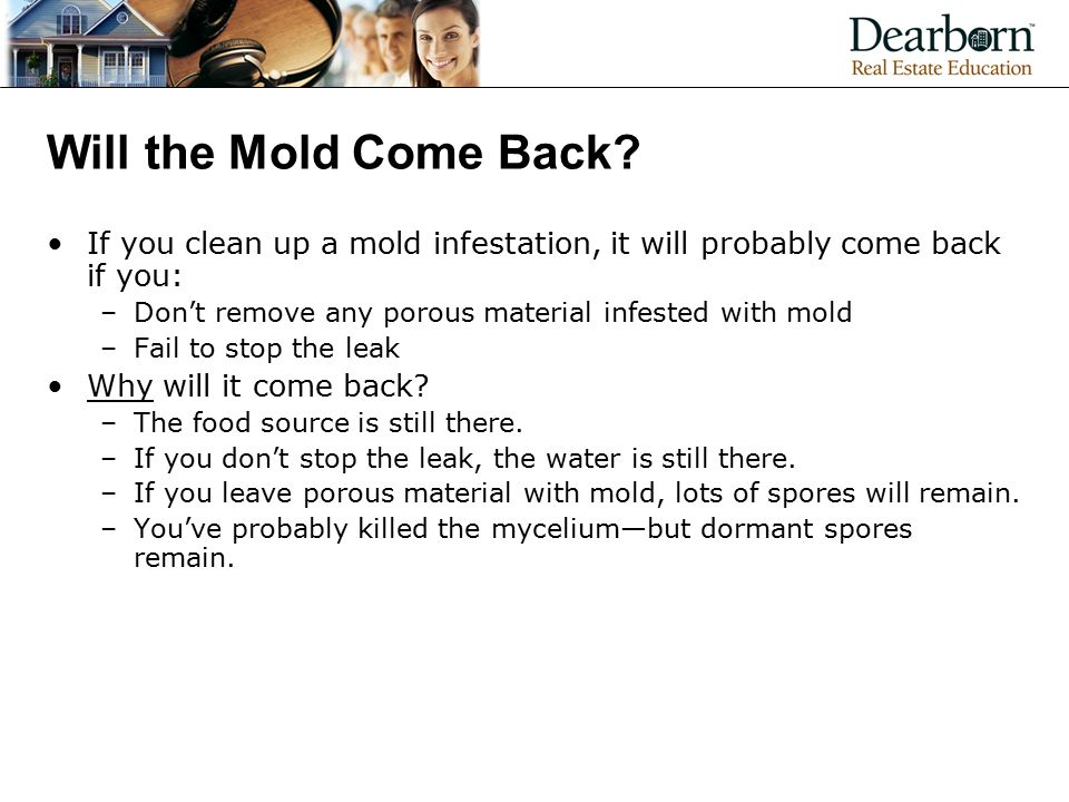 Will the Mold Come Back If you clean up a mold infestation, it will probably come back if you: Don't remove any porous material infested with mold.