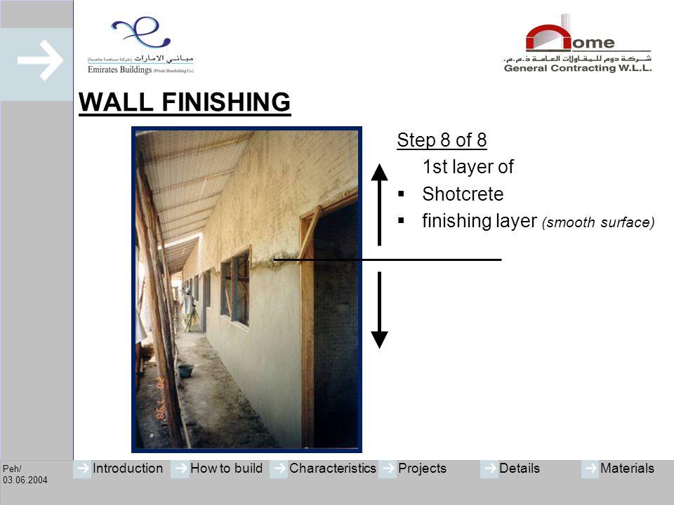 WALL FINISHING Step 8 of 8 1st layer of Shotcrete