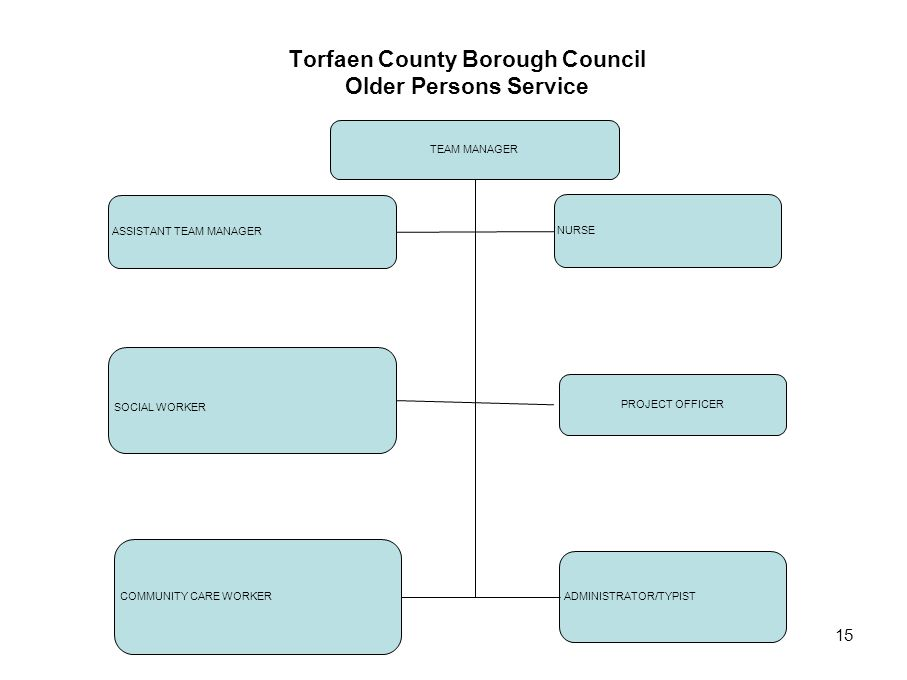 Torfaen County Borough Council Older Persons Service