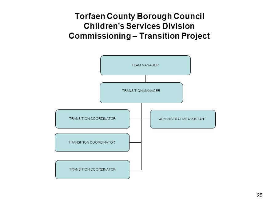 Torfaen County Borough Council Children's Services Division Commissioning – Transition Project