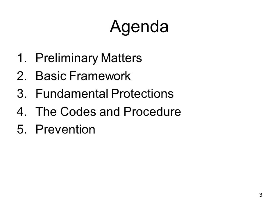 Agenda Preliminary Matters Basic Framework Fundamental Protections