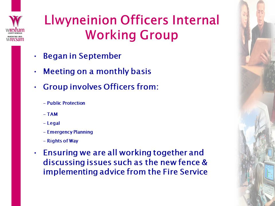 Llwyneinion Officers Internal Working Group