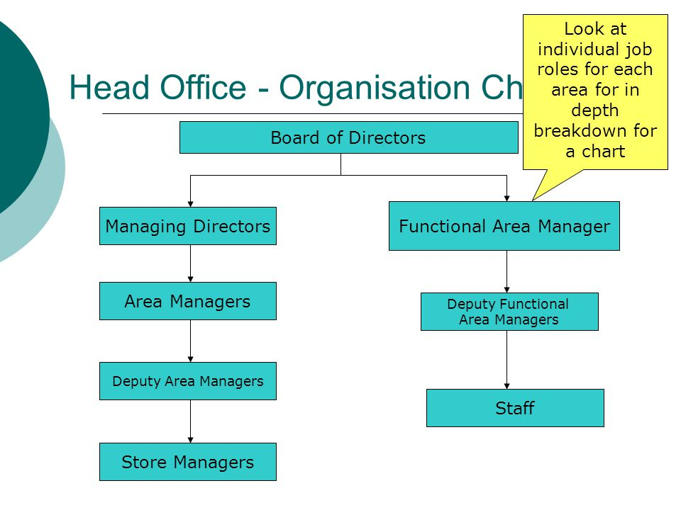 Head Office - Organisation Chart