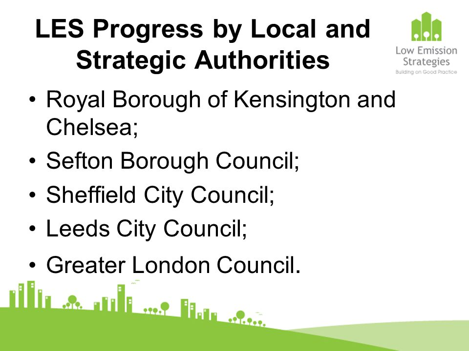 LES Progress by Local and Strategic Authorities