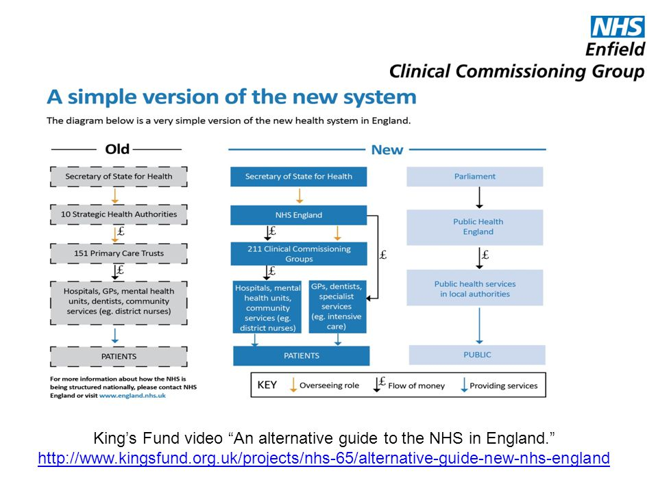 King's Fund video An alternative guide to the NHS in England.