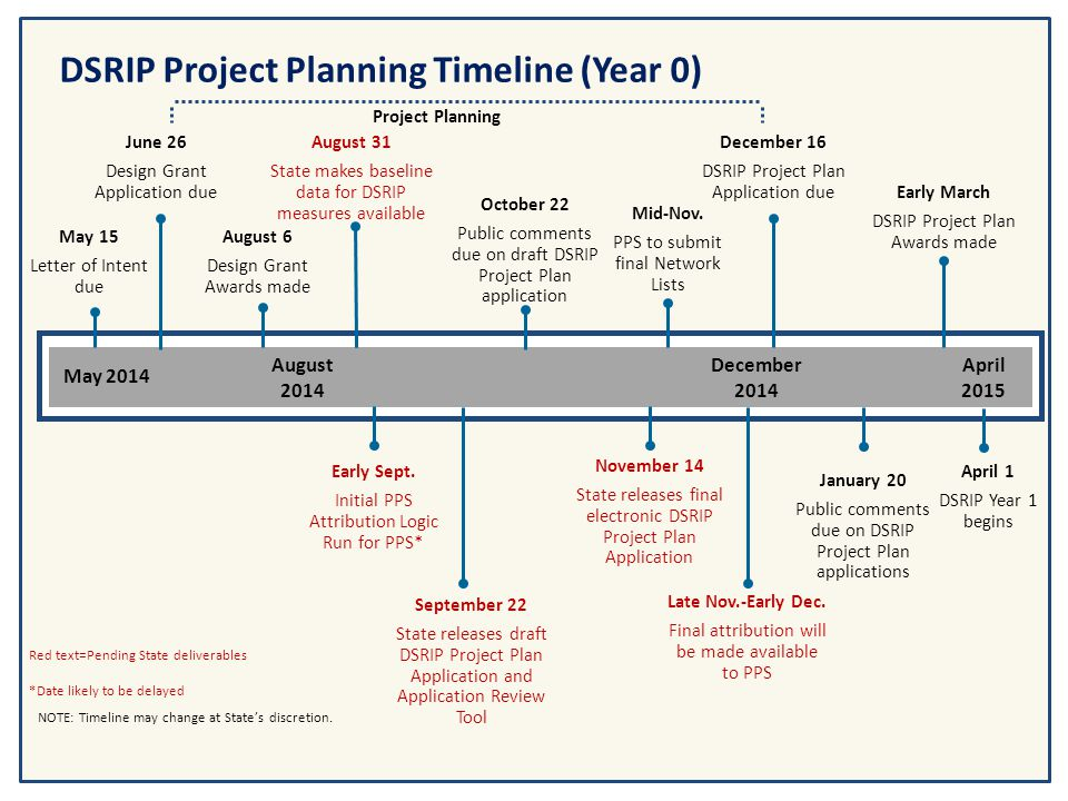 DSRIP Project Planning Timeline (Year 0)