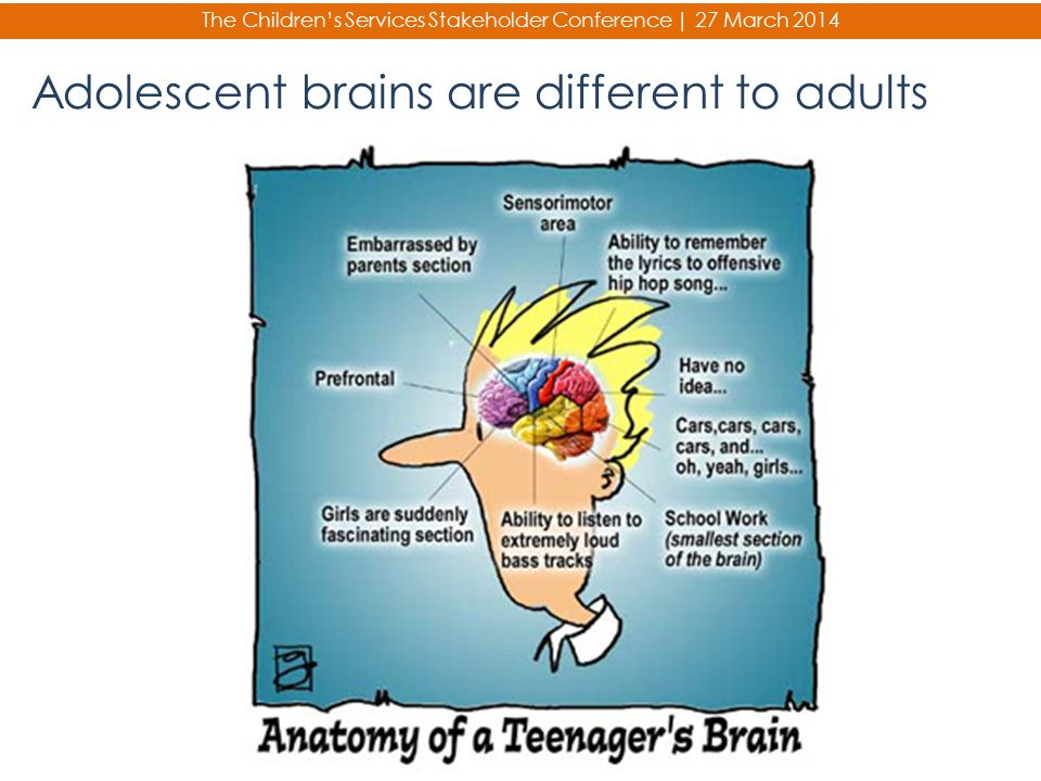 Adolescent brains are different to adults
