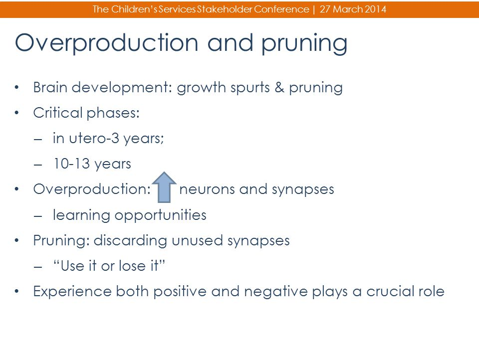 Overproduction and pruning